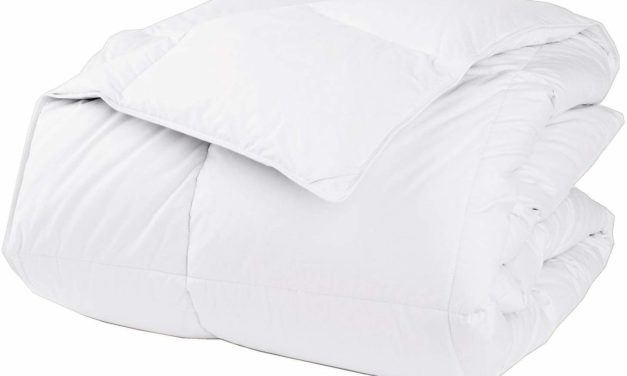 LaCrosse Down Comforter Review 2019
